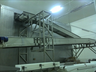 Meat processing convyor line