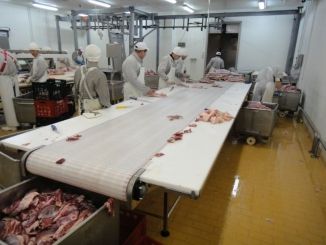 Meat cutting conveyors